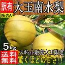 緊急スポット商品【長野県産】大玉南水梨 約5kg 訳あり【常...