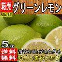 【和歌山県産】国産グリーンレモン 防腐剤未使用 約5kg 【常温送料無料】(東北のお客様は