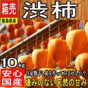 緊急スポット販売!!【徳島県・他西日本産】渋柿・吊るし柿【10kg】【常温便送料無料】