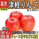 【青森県産】トキりんご 津軽りんご 他 旬のりんご 約8kg 色、大きさおまかせ 白りん