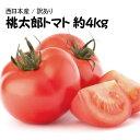 【西日本産】絶品 桃太郎 トマト 大きさおまかせ 訳あり 約...