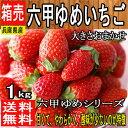 【兵庫県産】六甲ゆめいちご 大きさおまかせ 1箱 約250g...