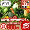 【西日本産 有機野菜】【送料無料】初めてのお客様限定! 西日本産 お試し野菜詰め合わせセット 6品【1名様1回限り】