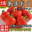 秀品【福岡県産】あまおう 苺 大粒 1箱 約270g×2パッ...