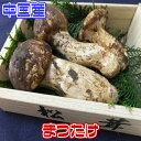 【中国産】松茸【野菜詰め合わせセットと同梱で送料無料】