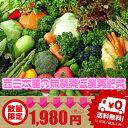 【西日本産 無農薬・低農薬・特別栽培農産物】【送料無料】西日本産の新鮮野菜おまかせ詰め合わせセット9品【リクエストOK】
