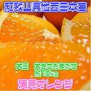 【和歌山県他 西日本産】樹上完熟 清見オレンジ 清見タンゴール 大きさおまかせ 約10kg 訳あり【