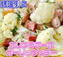 天然塩 阿波乃華 100g《国産天然食塩100%徳島県阿南産》