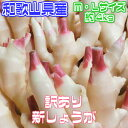 【和歌山県産】新生姜 M・Lサイズ 約4kg 訳あり【クール便推奨商品】【常温便送料無料】(北海道・
