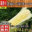 【徳島県産】フルーツコーン 1箱 約4kg【常温便送料無料】...