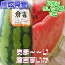 【予約商品】6月中旬頃発送予定【鳥取県産】倉吉すいか3Lサイ...