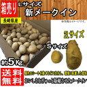 【長崎県産】新メークイン 新じゃが Lサイズ 5kg【常温便 送料無料】【西日本産