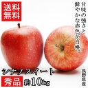 【長野県産】シナノスイート 林檎 約10kg 秀品 果物【常...