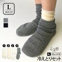 【冷えとり靴下 4足セット】正活絹 初心者セット(L) メンズ 841【あす楽】