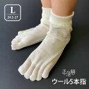 【冷えとり靴下 正活絹】ウール5本指靴下(L) メンズ 841【あす楽】[I:3/10]