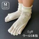 【冷えとり靴下 正活絹】ウール5本指靴下(M) ウール100% 841 日本製【あす楽】[I:9/40]