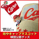 C_capm_01