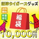 【送料無料】阪神タイガース 数量限定2017新春タイガースグッズ福袋 10000円