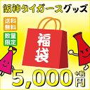 【送料無料】阪神タイガース 数量限定2017新春タイガースグッズ福袋 5000円