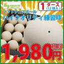 ハイクオリティ軟式テニスボール練習球 12個(1ダース)【ソフトテニスボール】