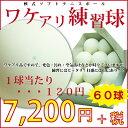 Soft_tennis_60p
