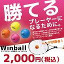 ウィンボール Winball テニスラケット専用ウェイトボー...