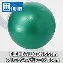 ショッピングバランスボール 【TWINS(ツインズ)】フレックスバルーン 55cm[112029]