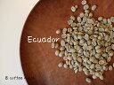【コーヒー生豆】エクアドル グレートマウンテン <内容量>300g