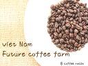 【コーヒー焙煎豆】ベトナム FINE ROBUSTA(ファインロブスタ) Winey - Honey <内容量>80g  Future coffee farm × 8coffee