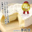 カマンベールチーズ はやきたチーズ乳製品 ナチュラルチーズ 北海道 夢民舎 お取り寄