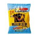 ショッピングラーメン 送料割引藤原製麺 熊出没注意 ラーメン 塩味 10食入 常 北海道 お土産
