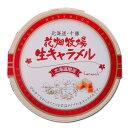 花畑牧場生キャラメルプレーン常温タイプ/ギフト北海道土産お菓子