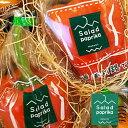 送料無料 釧路市大楽毛産 国産 サラダパプリカ 赤 5個セット 北海道お土産 地場野菜