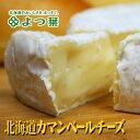 よつ葉 北海道 カマンベール チーズ 100g北海道お土産