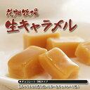 花畑牧場 生キャラメル チョコレート 8粒 北海道土産 プレゼント 【冷】