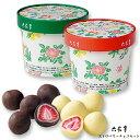 六花亭ストロベリーチョコセット(ミルク・ホワイト)/北海道お土産お返し友人お取り寄せ贈り物花柄かわいいいちごドライフルーツチョコレートろっかてい製菓母の日父の日