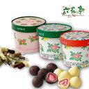 六花亭 ボックスチョコレート セット北海道 苺ドライフルーツ...