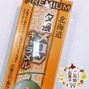 夕張メロン プレミアムキャラメル 18粒ギフト プレゼント 手土産 北海道お土産 お菓子