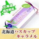 【ハスカップ果汁入り】北海道ハスカップキャラメル グルメフーズ【北海道限定】【常】【北海道お土産】