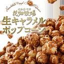 送料無料 花畑牧場 生キャラメルプレミアムポップコーン ×5袋北海道土産 ギフト