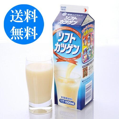 北海道地元ジュース ソフトカツゲン 1000ml 3本 送料無料雪印メグミルク ご当地 ドリンク 【冷】