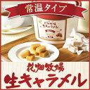 花畑牧場 生キャラメル 常温 タイプ 72g 約18粒ギフト プレゼント お土産 お菓子