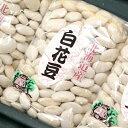 平成28年度産 北海道産新豆 白花豆 500g