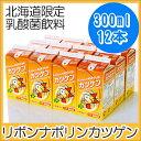 【雪印メグミルク 期間限定商品】リボンナポリン カツゲン 300ml×12本【北海道ご当地ドリンク】