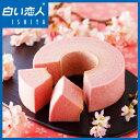 【期間限定】さくらバウム TSUMUGI(つむぎ) 【石屋製菓 白い恋人】【ホワイトデー お