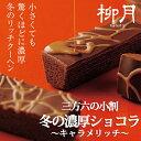 ショコラ バレンタイン チョコレート