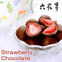 【六花亭】ストロベリーチョコ ミルク