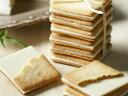 チーズチョコレートクッキー20枚入りチーズ タンテアニー ハウステンボス ホワイトチョコ 長崎 ラングドシャ