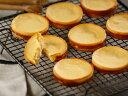 クリームチーズタルト10個入り<タンテ アニー>タンテ アニー ハウステンボス レモン風味 おしゃれ 小分け お菓子