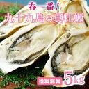 【送料無料】《九十九島産》春一番!殻付き牡蠣5kgガイド付/